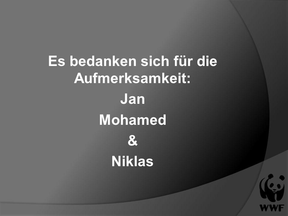 Es bedanken sich für die Aufmerksamkeit: Jan Mohamed & Niklas