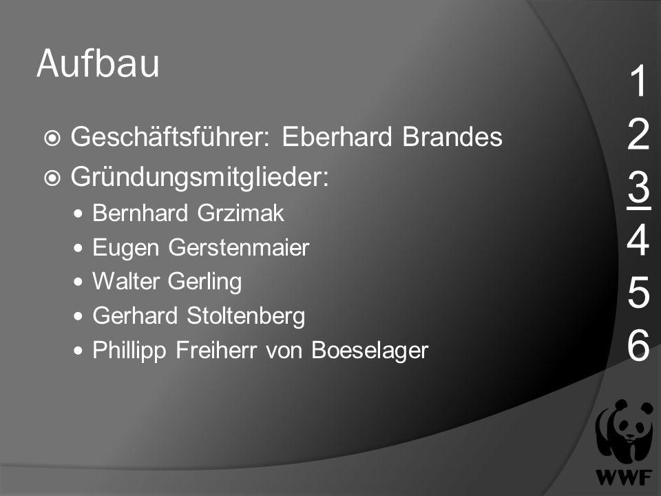 Aufbau Geschäftsführer: Eberhard Brandes Gründungsmitglieder: Bernhard Grzimak Eugen Gerstenmaier Walter Gerling Gerhard Stoltenberg Phillipp Freiherr