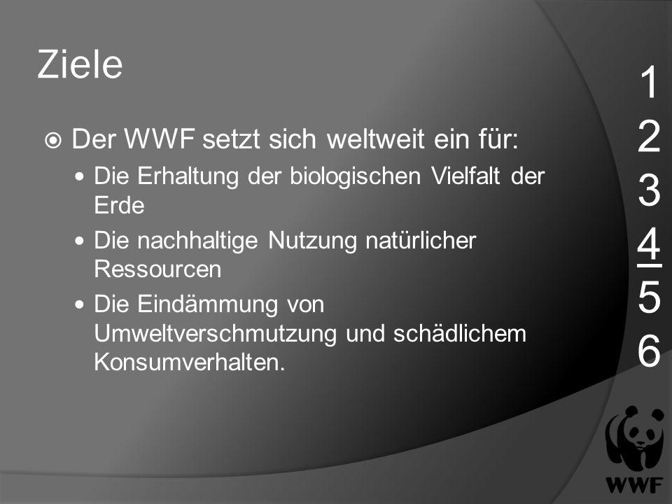 Ziele Der WWF setzt sich weltweit ein für: Die Erhaltung der biologischen Vielfalt der Erde Die nachhaltige Nutzung natürlicher Ressourcen Die Eindämm