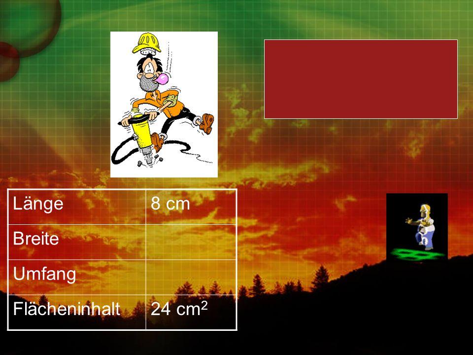 Länge8 cm Breite Umfang Flächeninhalt24 cm 2