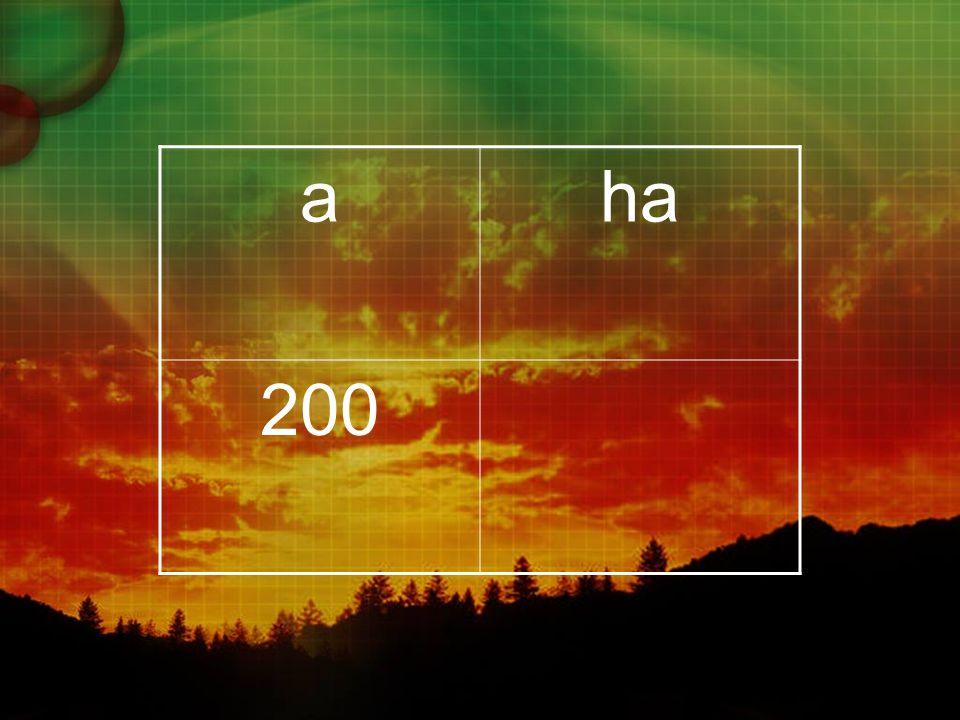 aha 200