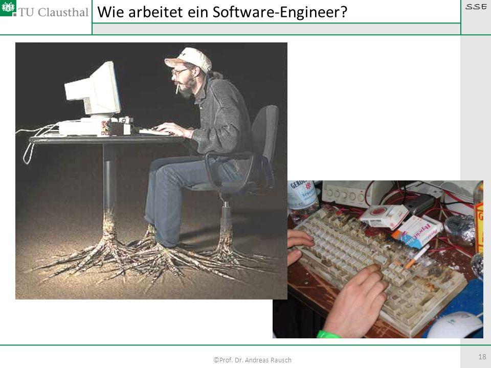 SSE ©Prof. Dr. Andreas Rausch 18 Wie arbeitet ein Software-Engineer?