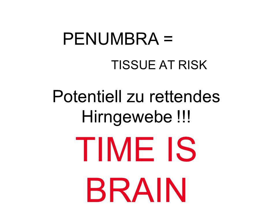 PENUMBRA = TISSUE AT RISK Potentiell zu rettendes Hirngewebe !!! TIME IS BRAIN