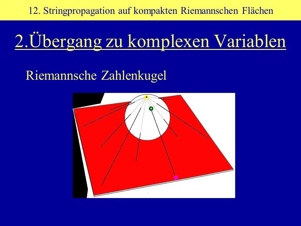 2.Übergang zu komplexen Variablen Riemannsche Zahlenkugel 12. Stringpropagation auf kompakten Riemannschen Flächen