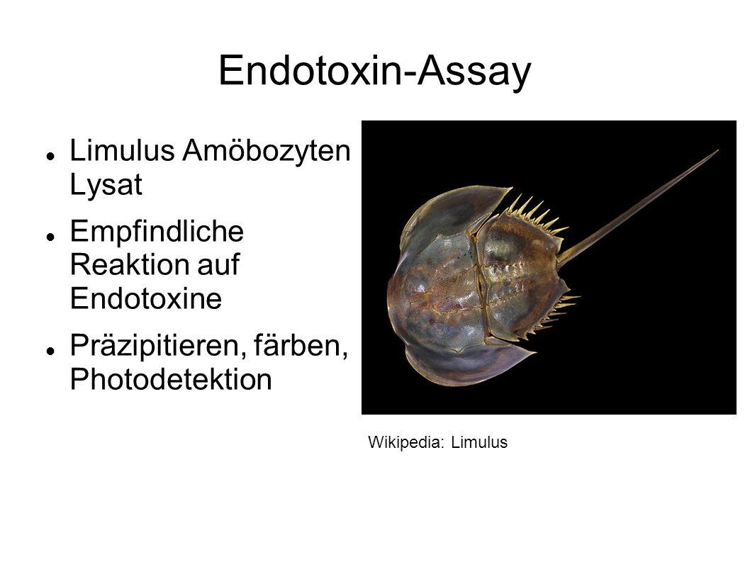 Endotoxin-Assay Limulus Amöbozyten Lysat Empfindliche Reaktion auf Endotoxine Präzipitieren, färben, Photodetektion Wikipedia: Limulus