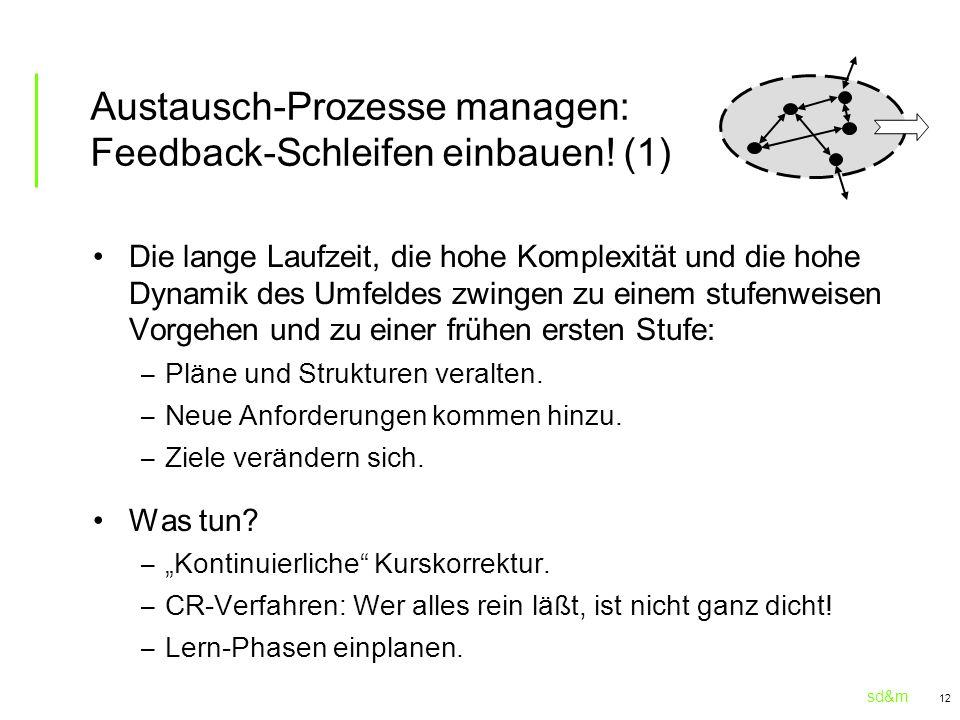 sd&m 12 Austausch-Prozesse managen: Feedback-Schleifen einbauen! (1) Die lange Laufzeit, die hohe Komplexität und die hohe Dynamik des Umfeldes zwinge