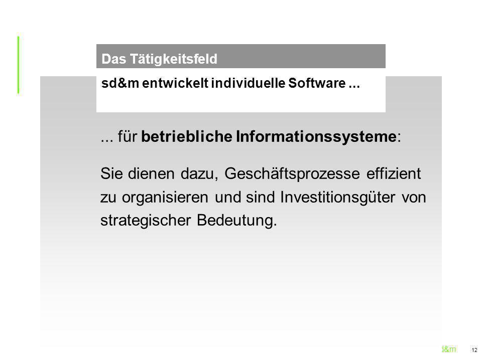 sd&m 12... für betriebliche Informationssysteme: Sie dienen dazu, Geschäftsprozesse effizient zu organisieren und sind Investitionsgüter von strategis