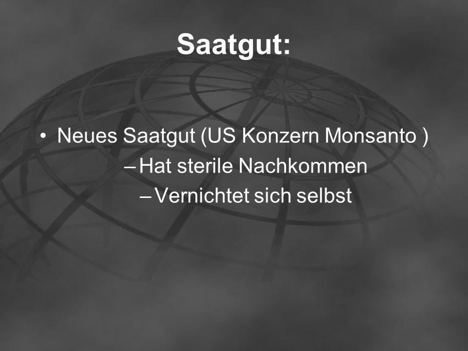 Saatgut: Neues Saatgut (US Konzern Monsanto ) –Hat sterile Nachkommen –Vernichtet sich selbst