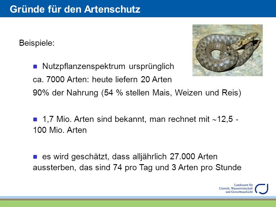 Gründe für den Artenschutz Beispiele: Nutzpflanzenspektrum ursprünglich ca. 7000 Arten: heute liefern 20 Arten 90% der Nahrung (54 % stellen Mais, Wei