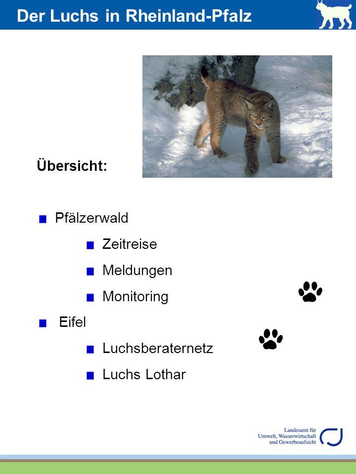 Übersicht: Pfälzerwald Zeitreise Meldungen Monitoring Eifel Luchsberaternetz Luchs Lothar