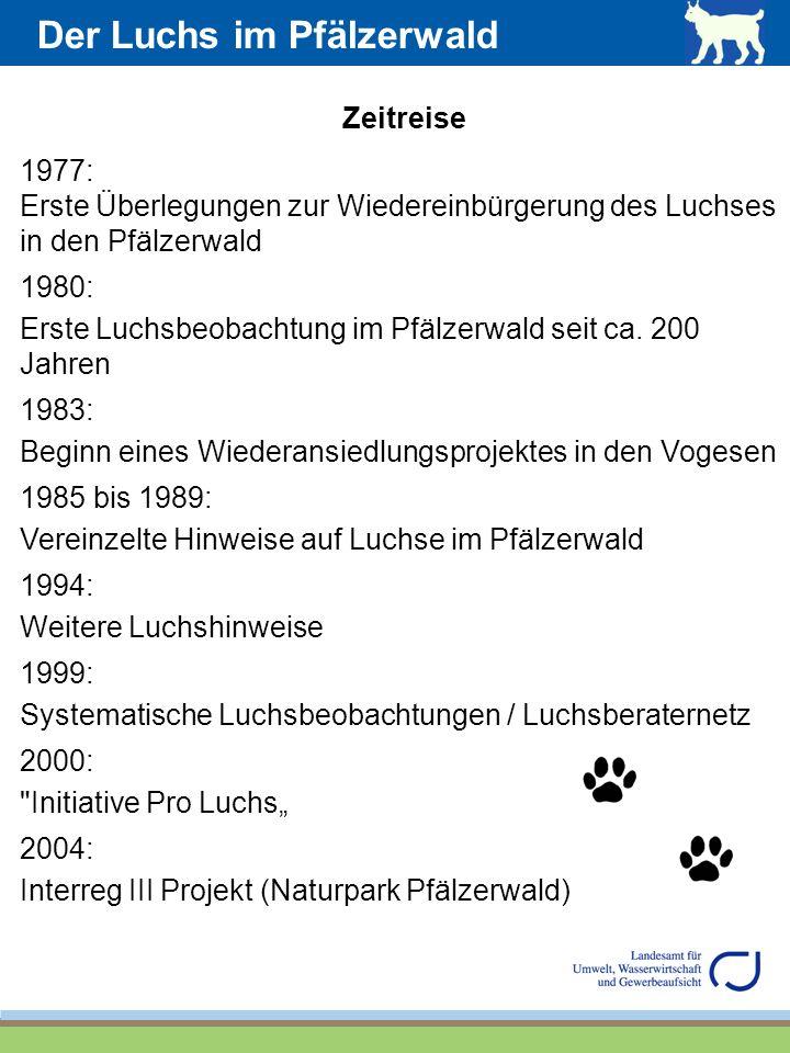 Der Luchs im Pfälzerwald Zeitreise 1977: Erste Überlegungen zur Wiedereinbürgerung des Luchses in den Pfälzerwald 1980: Erste Luchsbeobachtung im Pfäl