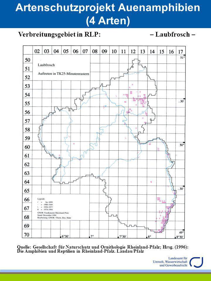 Artenschutzprojekt Auenamphibien (4 Arten) Verbreitungsgebiet in RLP: – Laubfrosch – Quelle: Gesellschaft für Naturschutz und Ornithologie Rheinland-P
