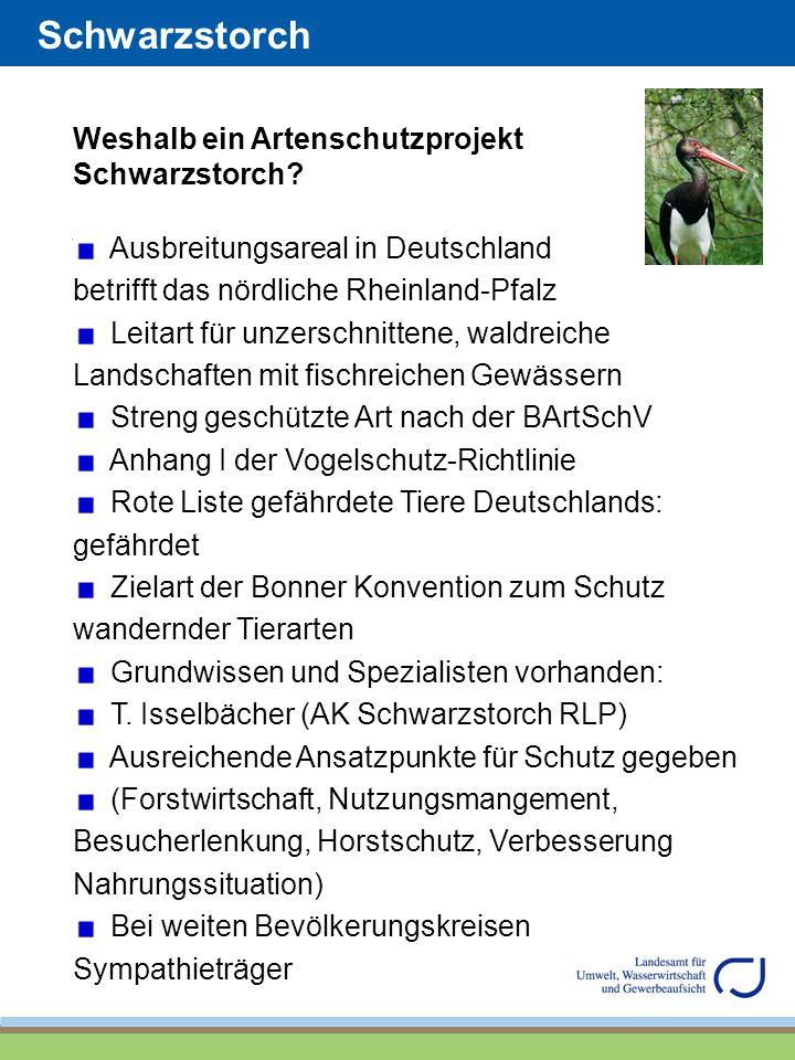 Schwarzstorch Weshalb ein Artenschutzprojekt Schwarzstorch? Ausbreitungsareal in Deutschland betrifft das nördliche Rheinland-Pfalz Leitart für unzers