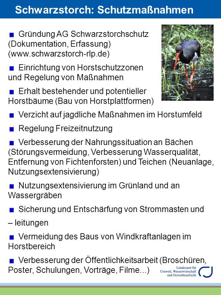Schwarzstorch: Schutzmaßnahmen Gründung AG Schwarzstorchschutz (Dokumentation, Erfassung) (www.schwarzstorch-rlp.de) Einrichtung von Horstschutzzonen