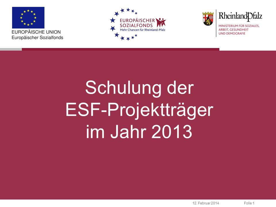 Folie 112. Februar 2014 Schulung der ESF-Projektträger im Jahr 2013
