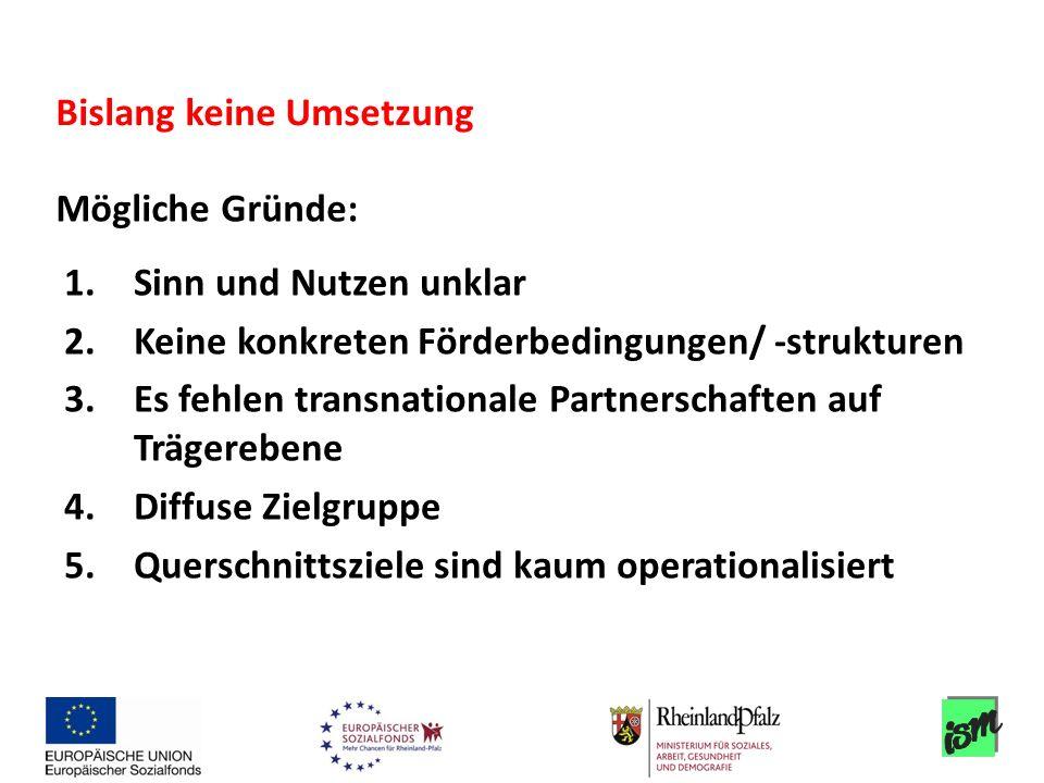 1.Sinn und Nutzen unklar 2.Keine konkreten Förderbedingungen/ -strukturen 3.Es fehlen transnationale Partnerschaften auf Trägerebene 4.Diffuse Zielgru