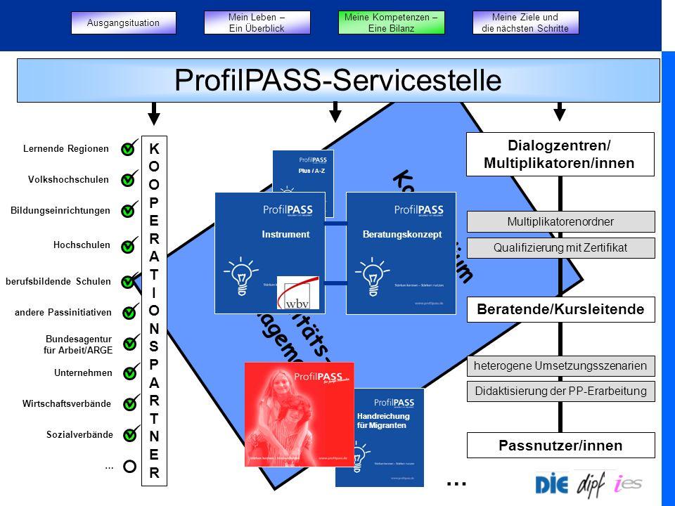 Kompendium Qualitäts- management Plus / A-Z BeratungskonzeptInstrument für Jugendliche für … Passnutzer/innen Beratende/Kursleitende Dialogzentren/ Mu