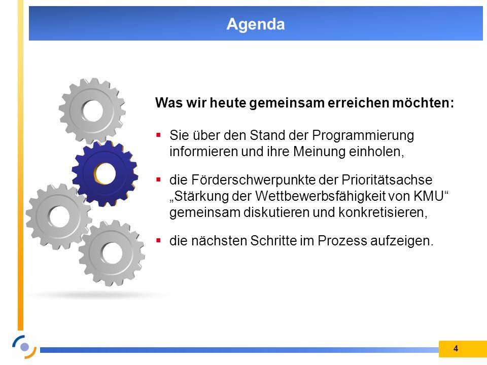 4 Agenda Was wir heute gemeinsam erreichen möchten: Sie über den Stand der Programmierung informieren und ihre Meinung einholen, die Förderschwerpunkt