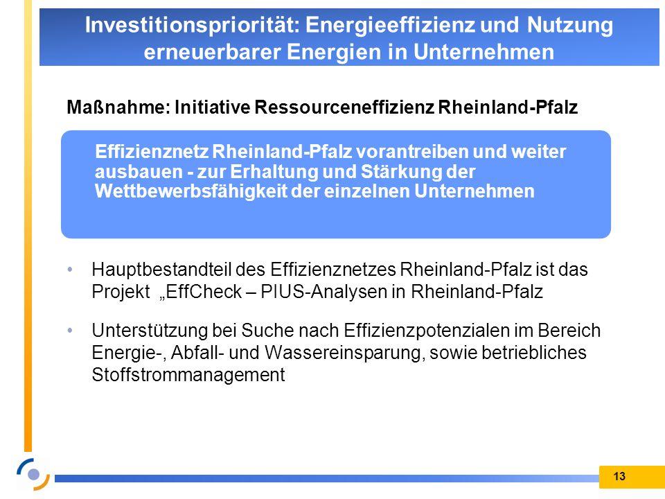 Maßnahme: Initiative Ressourceneffizienz Rheinland-Pfalz Hauptbestandteil des Effizienznetzes Rheinland-Pfalz ist das Projekt EffCheck – PIUS-Analysen