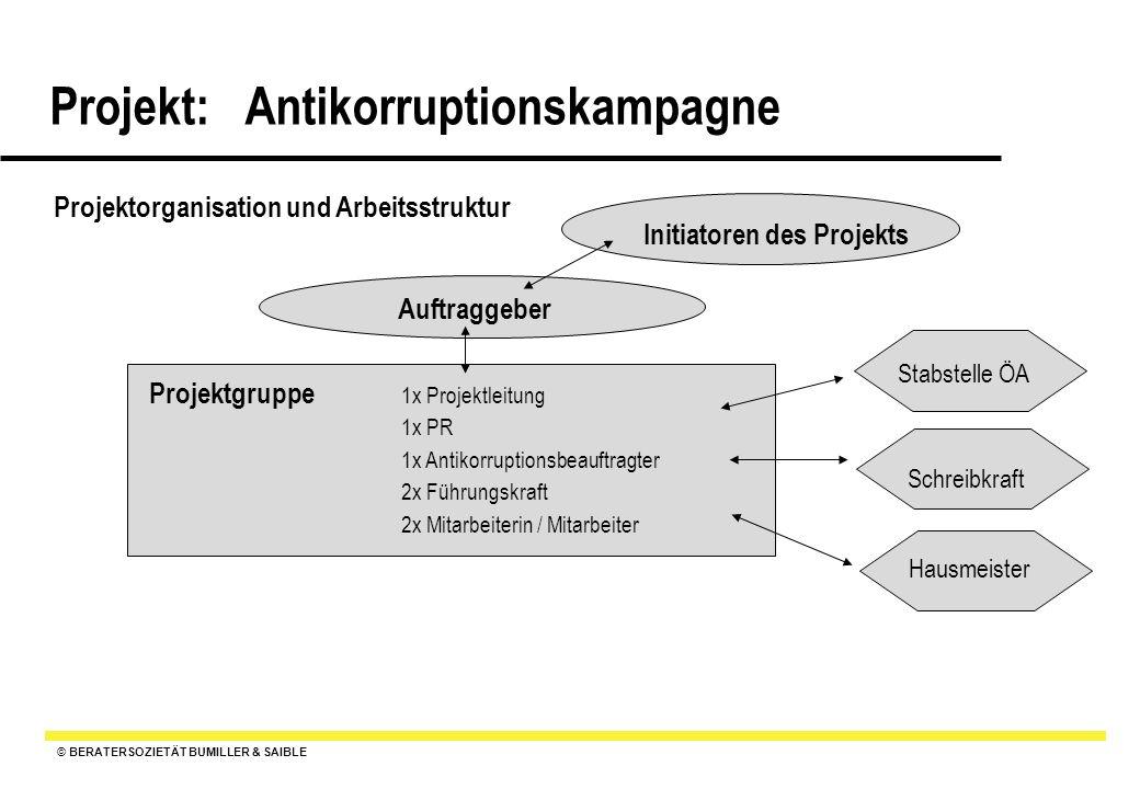 © BERATERSOZIETÄT BUMILLER & SAIBLE Projekt: Antikorruptionskampagne Projektorganisation und Arbeitsstruktur Projektgruppe Auftraggeber Initiatoren de