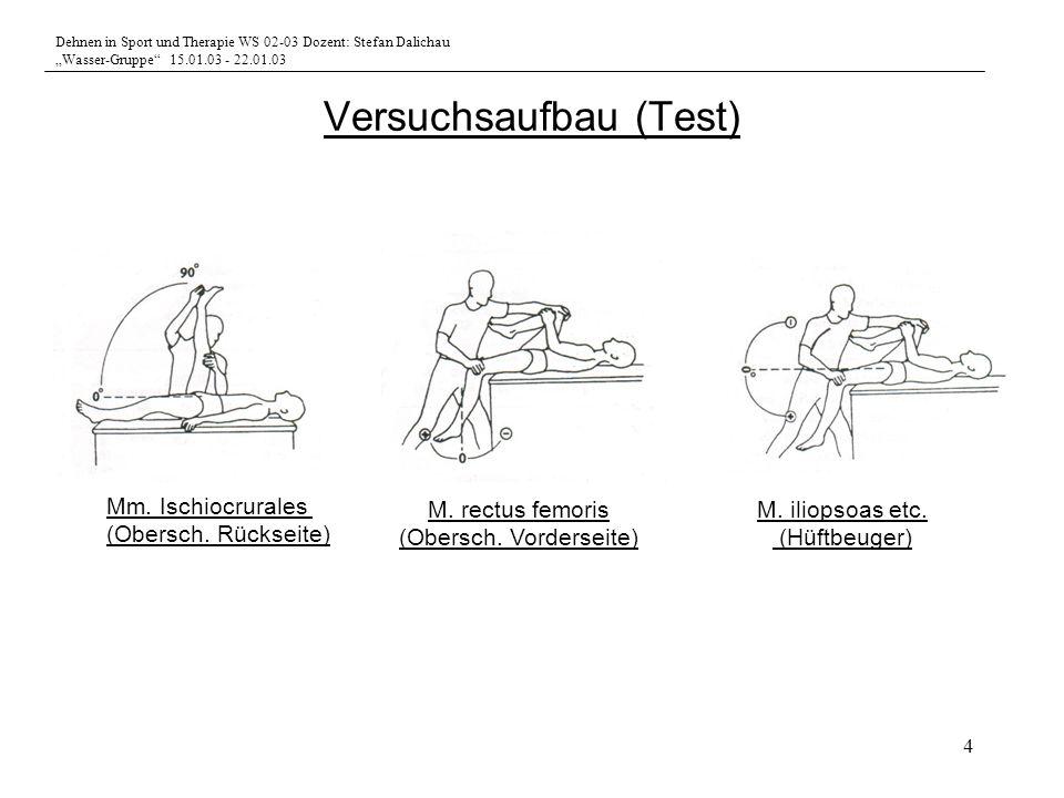 Dehnen in Sport und Therapie WS 02-03 Dozent: Stefan Dalichau Wasser-Gruppe 15.01.03 - 22.01.03 4 Versuchsaufbau (Test) Mm. Ischiocrurales (Obersch. R