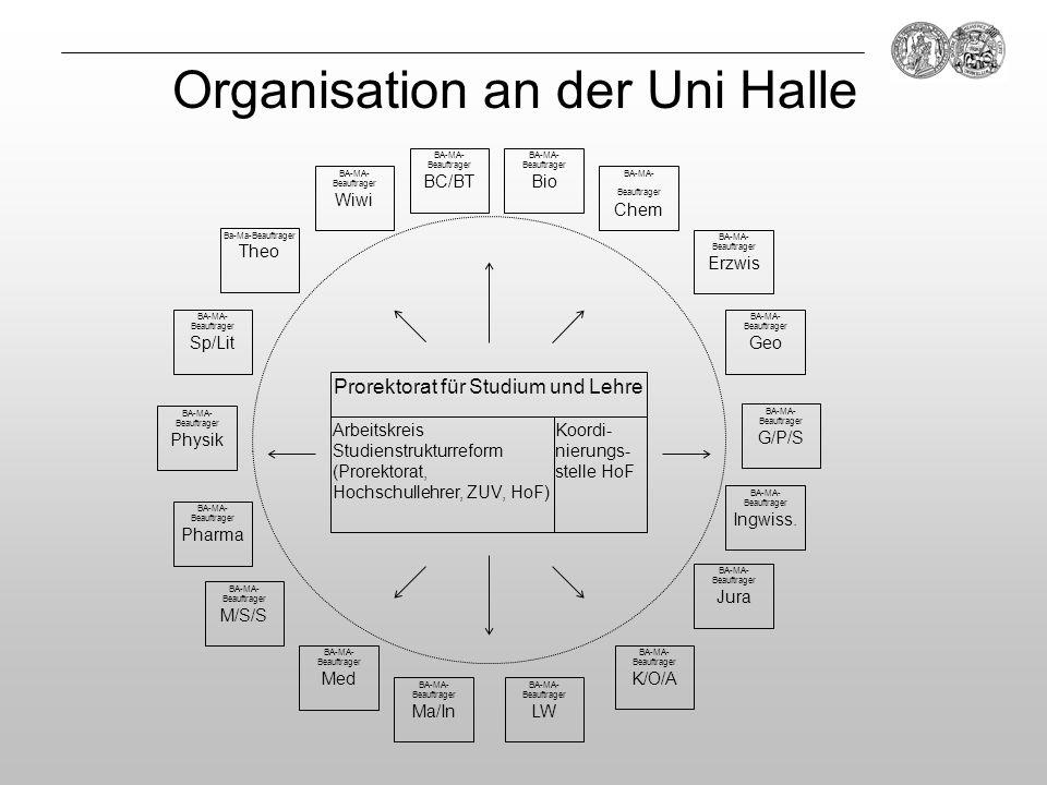Organisation an der Uni Halle Prorektorat für Studium und Lehre Arbeitskreis Studienstrukturreform (Prorektorat, Hochschullehrer, ZUV, HoF) Koordi- ni