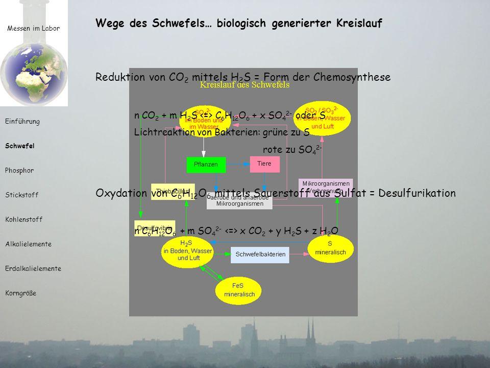 Messen im Labor Einführung Schwefel Phosphor Stickstoff Kohlenstoff Alkalielemente Erdalkalielemente Korngröße Wege des Schwefels… biologisch generier