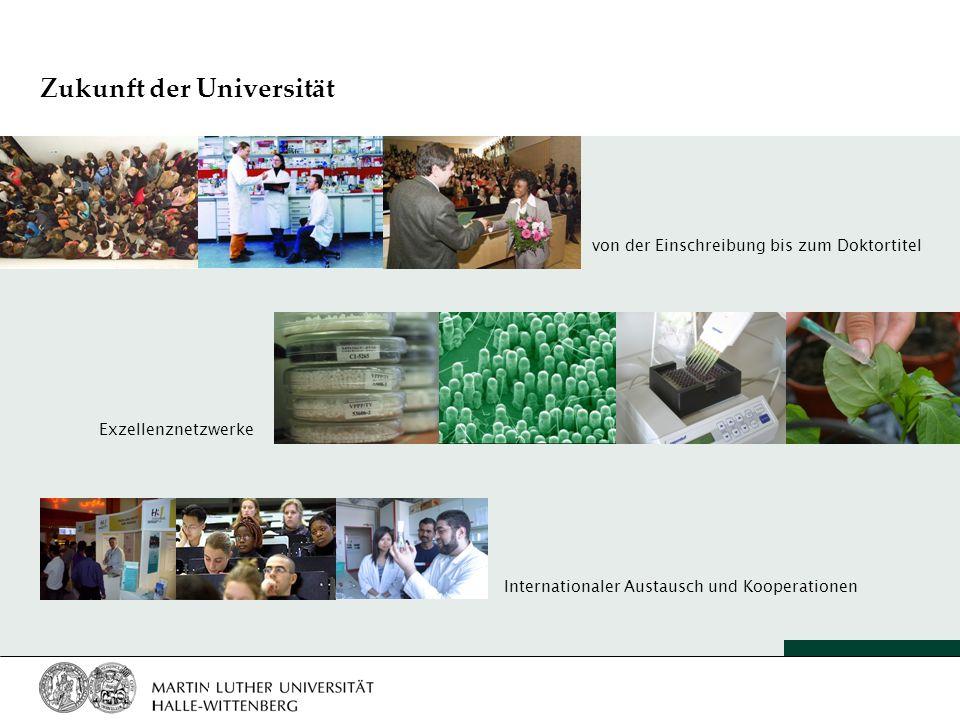 Zukunft der Universität von der Einschreibung bis zum Doktortitel Exzellenznetzwerke Internationaler Austausch und Kooperationen