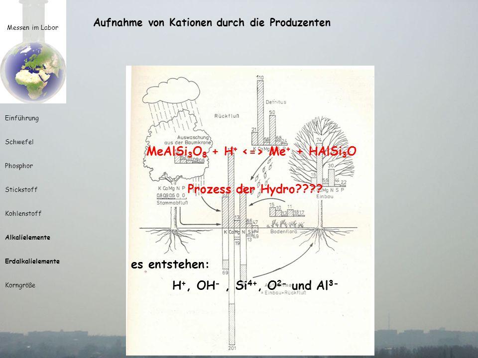 Messen im Labor Einführung Schwefel Phosphor Stickstoff Kohlenstoff Alkalielemente Erdalkalielemente Korngröße Aufnahme von Kationen durch die Produze