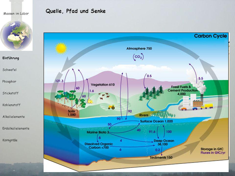 Messen im Labor Einführung Schwefel Phosphor Stickstoff Kohlenstoff Alkalielemente Erdalkalielemente Korngröße Quelle, Pfad und Senke Senke oder Ende des Prozesses Stoff (die Größe) wird fixiert Stoff (die Größe) wird verbraucht Stoff (die Größe) wird aus dem System entfernt Beispiele:biogene Fixierung des CO 2 in CaCO 3 Quantität verändert Qualität Prozess erlischt ohne eigentliche Senke