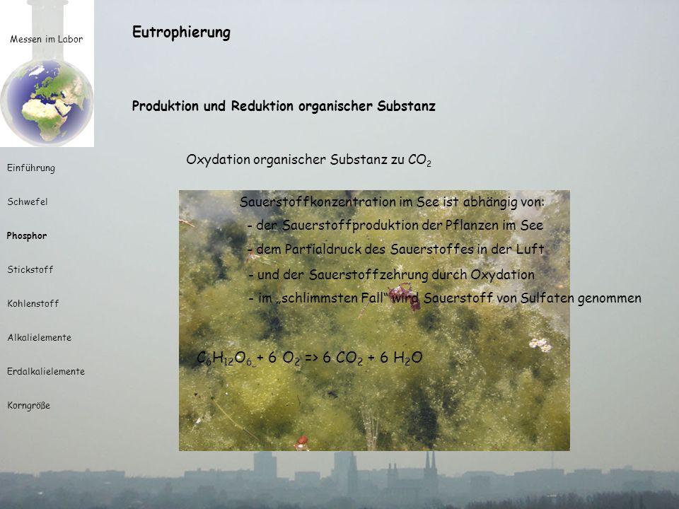 Messen im Labor Einführung Schwefel Phosphor Stickstoff Kohlenstoff Alkalielemente Erdalkalielemente Korngröße Nachweis mittels Spektral-Photometer Probenküvette monochromatische Lampe Detektor