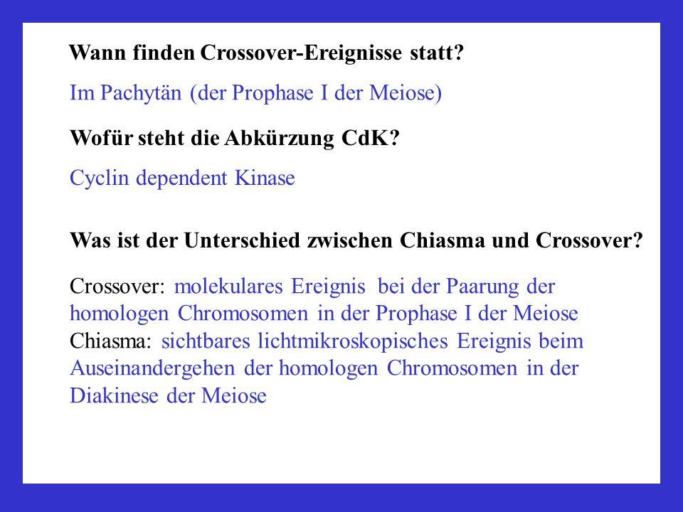 Wann finden Crossover-Ereignisse statt? Im Pachytän (der Prophase I der Meiose) Wofür steht die Abkürzung CdK? Cyclin dependent Kinase Was ist der Unt