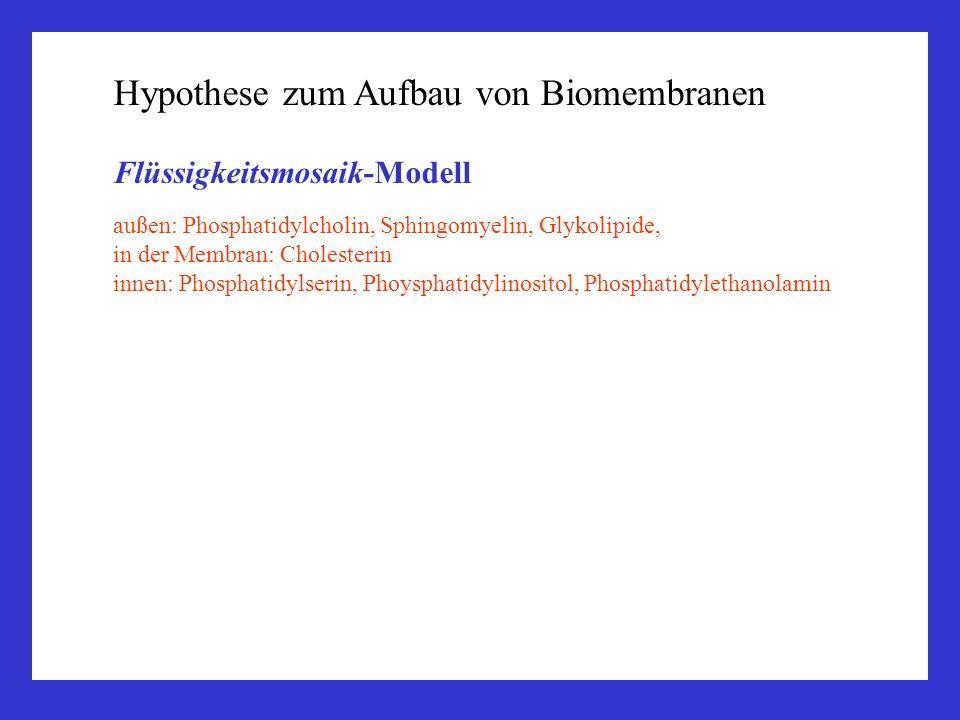 Hypothese zum Aufbau von Biomembranen Flüssigkeitsmosaik-Modell außen: Phosphatidylcholin, Sphingomyelin, Glykolipide, in der Membran: Cholesterin inn