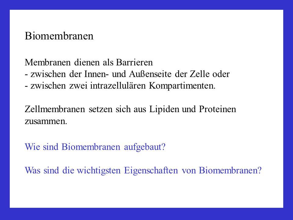 Zellbiologie 1.Biomembranen, Plasmalemma 2.