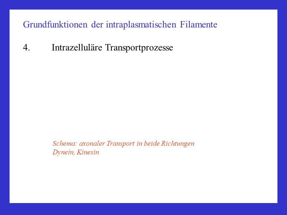 Grundfunktionen der intraplasmatischen Filamente 4.Intrazelluläre Transportprozesse Schema: axonaler Transport in beide Richtungen Dynein, Kinesin