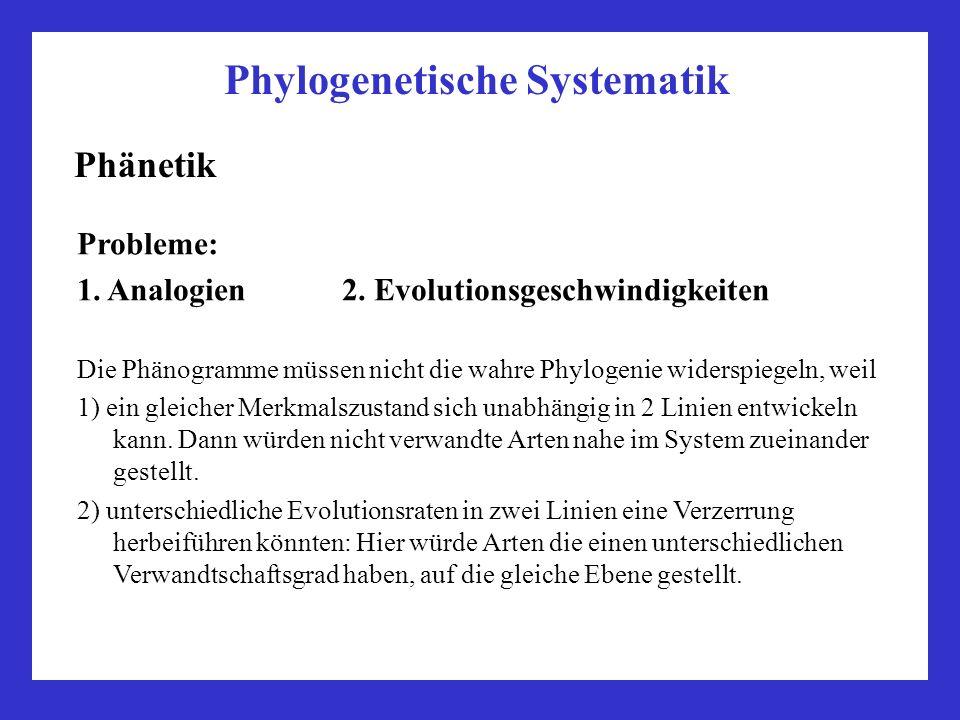 Phylogenetische Systematik Phänetik Probleme: 1. Analogien 2. Evolutionsgeschwindigkeiten Die Phänogramme müssen nicht die wahre Phylogenie widerspieg