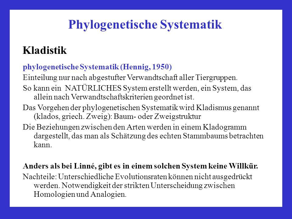 Phylogenetische Systematik Kladistik phylogenetische Systematik (Hennig, 1950) Einteilung nur nach abgestufter Verwandtschaft aller Tiergruppen. So ka