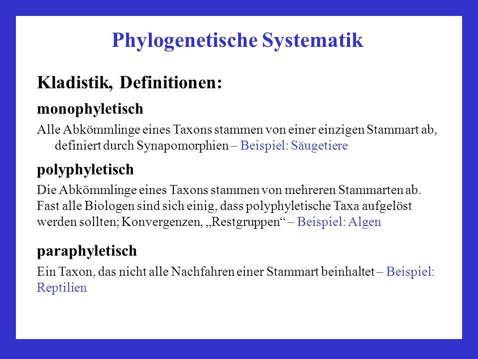 Phylogenetische Systematik Kladistik, Definitionen: monophyletisch Alle Abkömmlinge eines Taxons stammen von einer einzigen Stammart ab, definiert dur