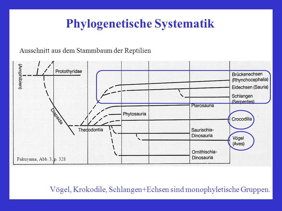 Phylogenetische Systematik Ausschnitt aus dem Stammbaum der Reptilien Fukuyama, Abb. 3, p. 328 Vögel, Krokodile, Schlangen+Echsen sind monophyletische