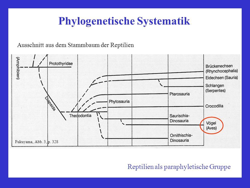 Phylogenetische Systematik Ausschnitt aus dem Stammbaum der Reptilien Fukuyama, Abb. 3, p. 328 Reptilien als paraphyletische Gruppe