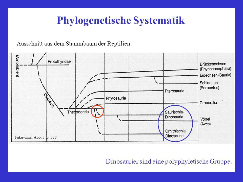 Phylogenetische Systematik Ausschnitt aus dem Stammbaum der Reptilien Fukuyama, Abb. 3, p. 328 Dinosaurier sind eine polyphyletische Gruppe.