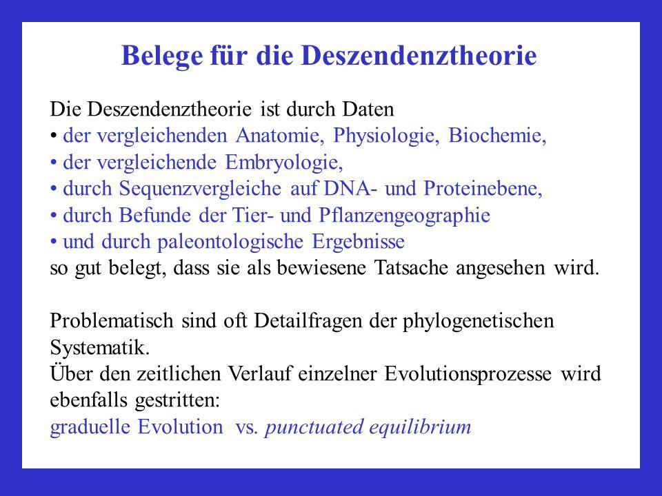 Belege für die Deszendenztheorie Die Deszendenztheorie ist durch Daten der vergleichenden Anatomie, Physiologie, Biochemie, der vergleichende Embryolo