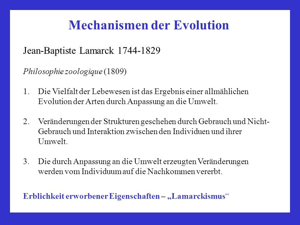 Mechanismen der Evolution Jean-Baptiste Lamarck 1744-1829 Philosophie zoologique (1809) 1.Die Vielfalt der Lebewesen ist das Ergebnis einer allmählich