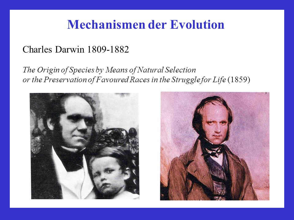 Mechanismen der Evolution Charles Darwin 1809-1882 The Origin of Species by Means of Natural Selection or the Preservation of Favoured Races in the Struggle for Life (1859)