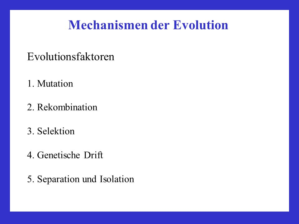 Mechanismen der Evolution Evolutionsfaktoren 1. Mutation 2. Rekombination 3. Selektion 4. Genetische Drift 5. Separation und Isolation