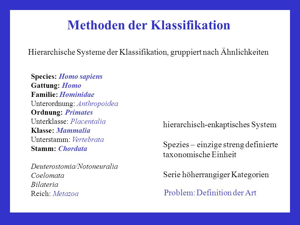 Methoden der Klassifikation Species: Homo sapiens Gattung: Homo Familie: Hominidae Unterordnung: Anthropoidea Ordnung: Primates Unterklasse: Placentalia Klasse: Mammalia Unterstamm: Vertebrata Stamm: Chordata Deuterostomia/Notoneuralia Coelomata Bilateria Reich: Metazoa Hierarchische Systeme der Klassifikation, gruppiert nach Ähnlichkeiten hierarchisch-enkaptisches System Spezies – einzige streng definierte taxonomische Einheit Serie höherrangiger Kategorien Problem: Definition der Art