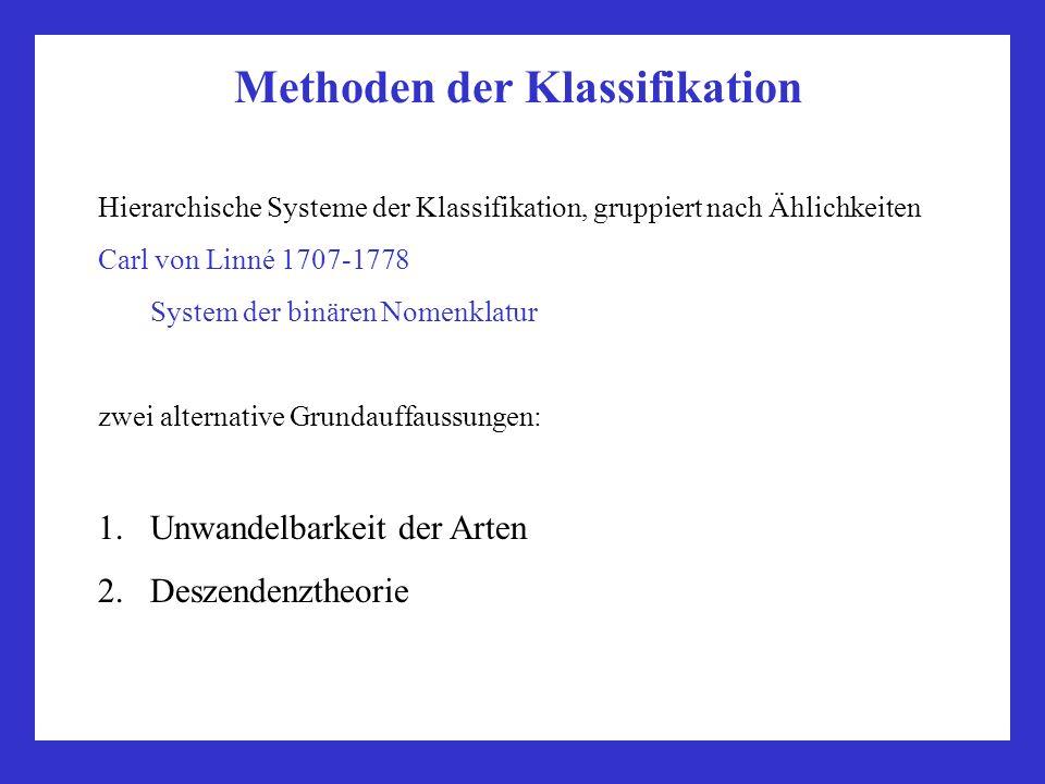 Methoden der Klassifikation Hierarchische Systeme der Klassifikation, gruppiert nach Ählichkeiten Unwandelbarkeit der Arten Aristoteles (3.