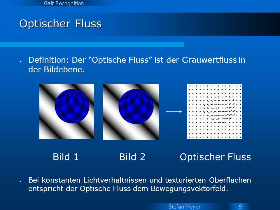 Stefan Meyer Gait Recognition 10 Optischer Fluss - Berechnung Bild 1Bild 2 Ergebnis: U(x,y) = -1 V(x,y) = -1 Beispiel für die Berechnung des blau-markierten Pixels Suchbereich 3x3 Pixel