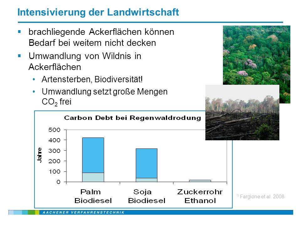 Name der Präsentation, 20.03.2008 30 Intensivierung der Landwirtschaft brachliegende Ackerflächen können Bedarf bei weitem nicht decken Umwandlung von