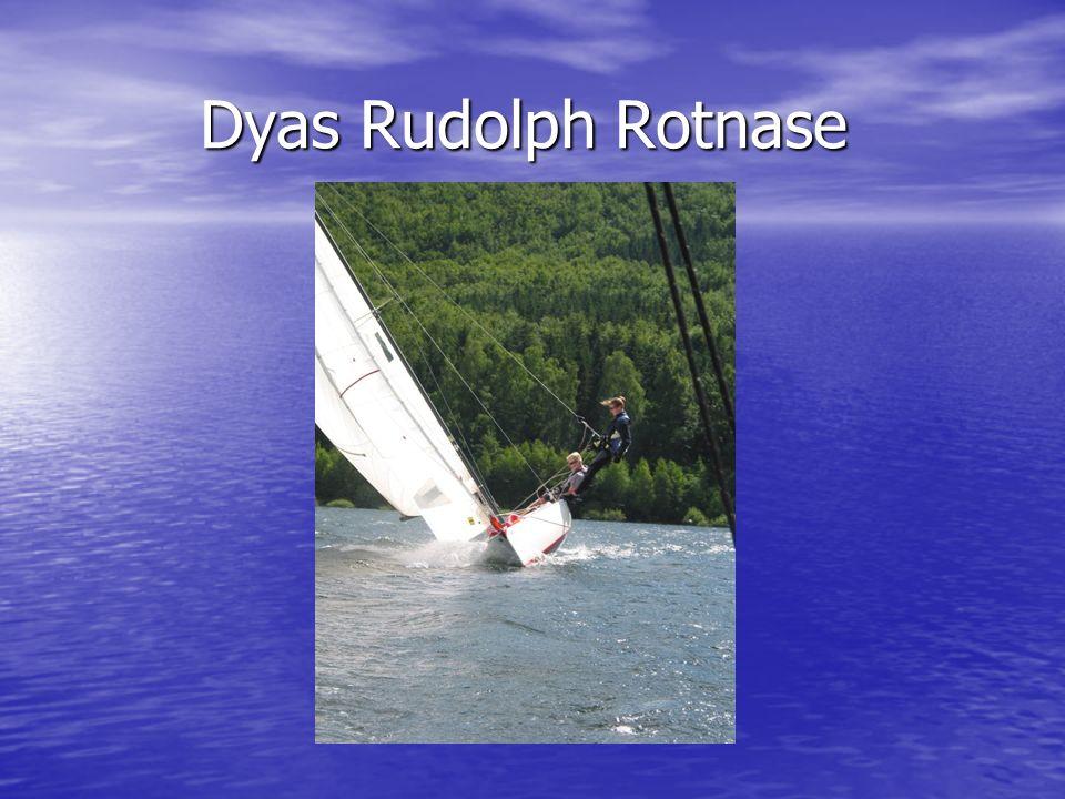 Dyas Rudolph Rotnase